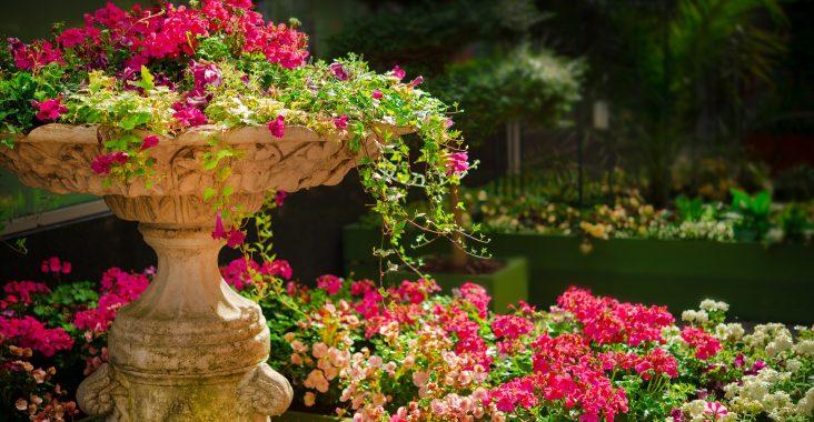 decoração área externa e jardim